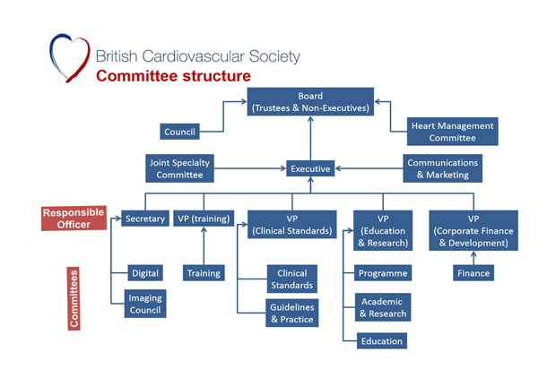 BCS Committee Structure 2017
